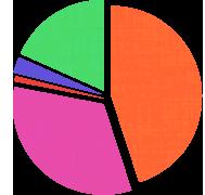 Graphique du budget pendant le voyage
