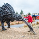 le kiwi géant de national park
