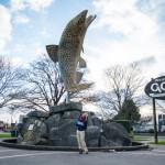 Que faire en Nouvelle-Zélande