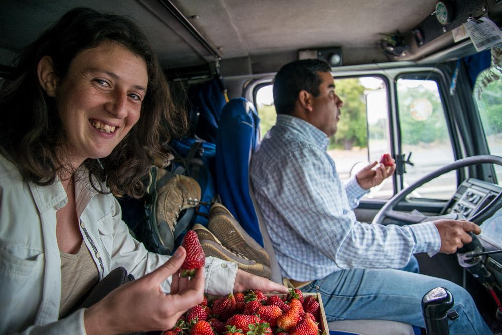 Julie mangeant des fraises dans un camion