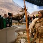 Les dessins de la Caverne du Pont d'Arc ont été réalisé par des homo sapiens