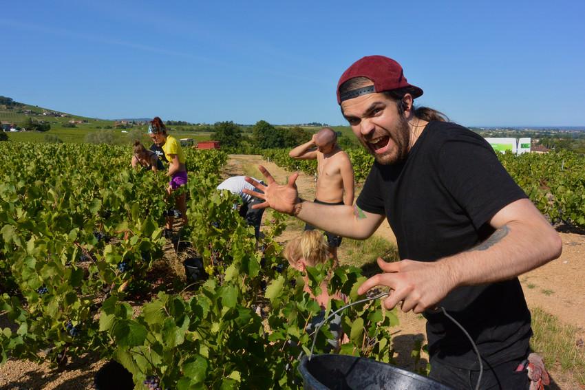 ambiance décontractée dans les vignes