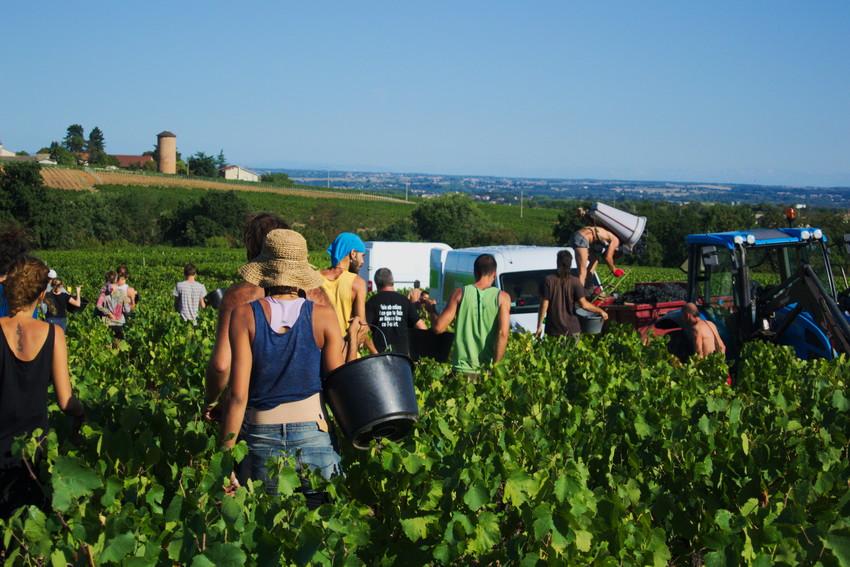 fin de la journée, vue sur le château Pierreux, Odenas