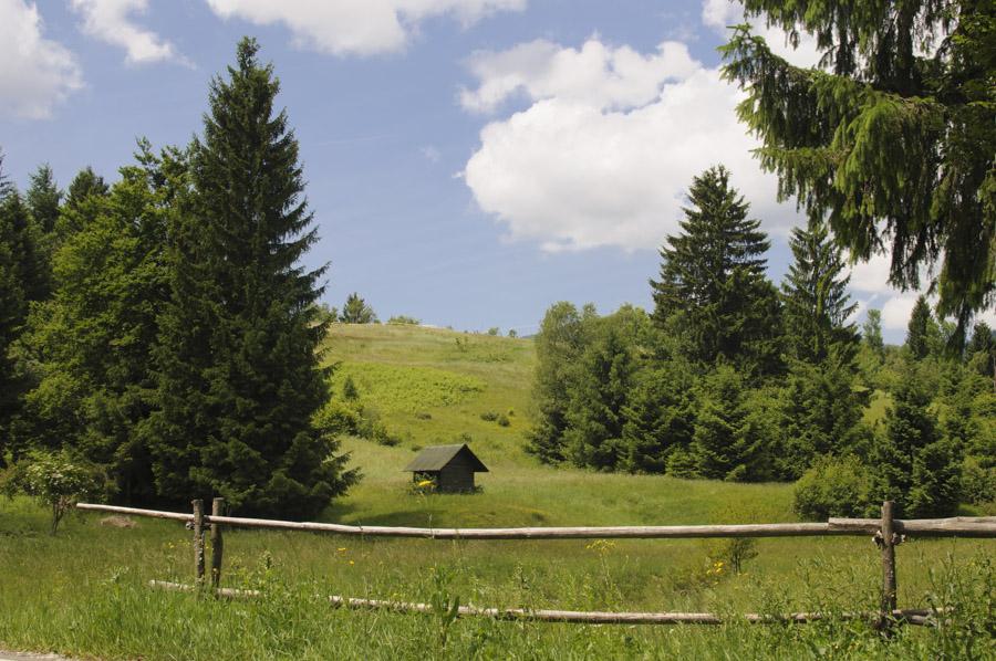 Entre Delnice et le parc Risnjak en Croatie